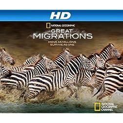 Great Migrations Season 1 [HD]