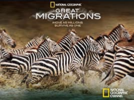 Great Migrations Season 1 [HD]