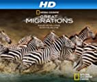 Great Migrations [HD]: Great Migrations Volume 1 [HD]