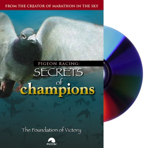 Pigeon Racing: Secrets of Champions