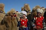 Image de Faszination Wüste - Gobi: Größte Steppenwüste Asiens