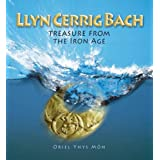 Llyn Cerrig Bach: Treasure from the Iron Ageby Philip Steele