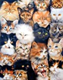 Cute Cats Breed Collage Pet Animal Kittens Art Print Poster (16x20)