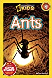 Image of National Geographic Readers: Ants