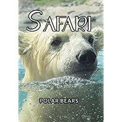 Safari Polar Bears
