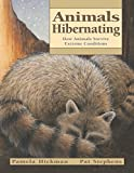 img - for Animals Hibernating: How Animals Survive Extreme Conditions (Animal Behavior) book / textbook / text book