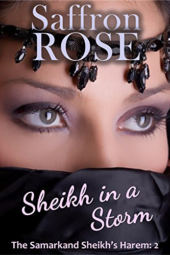 Sheikh in a Storm: Erotic Adventures for Exotic Nights (The Samarkand Sheikh's Harem Book 2)