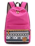 Leaper Causal Style Canvas Laptop Bag/ Shoulder Bag/ School Backpack/ Travel Bag/ Handbag with Embroidery Design (Rose)