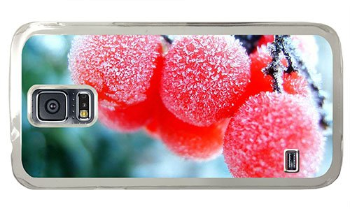 Hipster Samsung S5 Cases Awesome Frozen Fruits Pc Transparent For Samsung S5 front-1036300