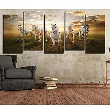 lyhyl-stretched-canvas-art-animal-a-pentium-horse-set-of-5
