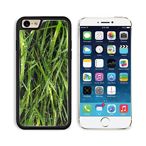 Wet Grass Blades Nature Plant Apple Iphone 6 Tpu Snap Cover Premium Aluminium Design Back Plate Case Customized Made To Order Support Ready Luxlady Iphone_6 Professional Case Touch Accessories Graphic Covers Designed Model Sleeve Hd Template Wallpaper Pho front-1006541