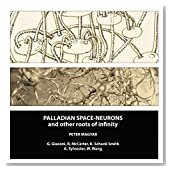 Palladian Space-Neurons and Other Roots of Infinity