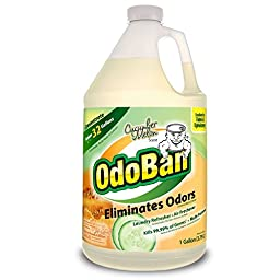 OdoBan Odor Eliminator and Disinfectant Concentrate, Cucumber Melon