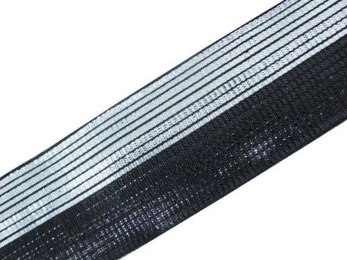 4.5 Yd Metallic Two Color Jacquard Ribbon Border Trim Lace