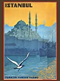 Istanbul Turkey Turkish Vintage Travel Advertisement Art Poster