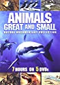 Animals Great & Small (5 Discos) [DVD]<br>$456.00