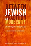 img - for Between Jewish Tradition and Modernity: Rethinking an Old Opposition, Essays in Honor of David Ellenson book / textbook / text book