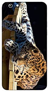 Timpax protective Armor Hard Bumper Back Case Cover. Multicolor printed on 3 Dimensional case with latest & finest graphic design art. Compatible with Apple iPhone 6 Design No : TDZ-27641