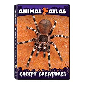 Animal Atlas: Creepy Creatures movie