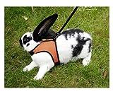 Kerbl Kaninchengeschirr mit flexibler Leine 120cm