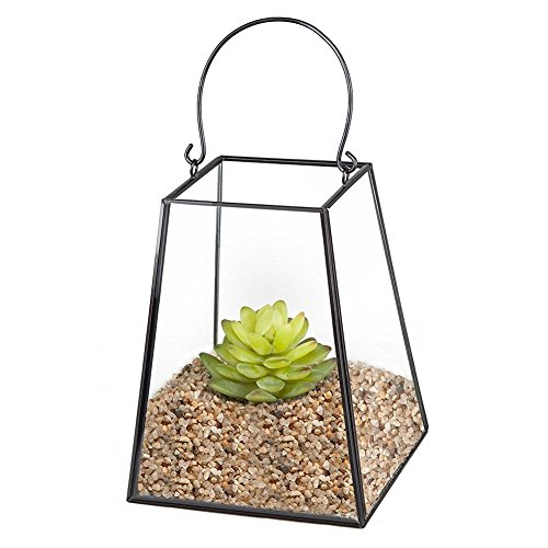 HOMEIDEAS Modern Metal Glass Plant Terrarium Box Halloween Tea Light Holder 6.7 x 5.3 x 5.3 Inches(Black)