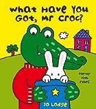 Mr Croc: What Have You Got Mr Croc?