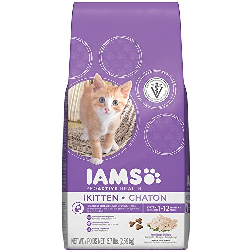 Iams Kitten Dry Food Reviews