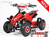 Mini ATV Quad Pocketquad Kinderquad Kinderfahrzeug Dragon