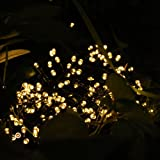 Weanas ® Solar Power String Fairy Lights 200 LEDs Warm White Solar Energy 72 feet 22M for Indoor Outdoor Home Garden Christmas Wedding Party