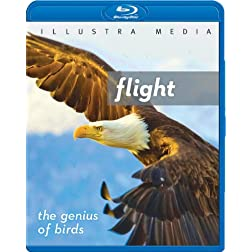 Flight: The Genius of Birds [Blu-ray]