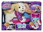Furreal Friends - A1649E240 - Peluche - Mon Chien Skateboarder