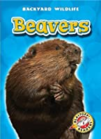 Beavers (Blastoff! Readers: Backyard Wildlife) (Blastoff! Readers: Backyard Wildlife: Level 1)