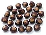 Buckeye Nuts - Quarter Size - Twenty-Five Nuts