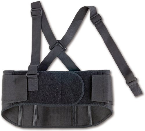 ProFlex 1600 Standard Elastic Back Support Belt, Black, Large
