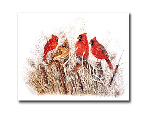 Red Birds Cardinals In Grass Animal Wildlife Wall Picture Art Print (Cardinal Bird Pictures compare prices)