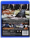 Image de Bait (Blu-Ray) (Import) (2013) Richard Brancatisano; Xavier Samuel; Chris Be