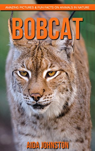 bobcat-amazing-pictures-fun-facts-on-animals-in-nature-english-edition
