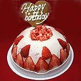 【お誕生日ギフトアイスケーキ】 いちごヨーグルトアイスケーキ ランキングお取り寄せ