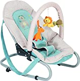 Fillikid Funny Baby Bouncer Blue