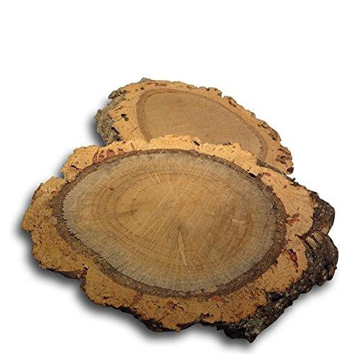 2 Dischi di tronco di sughero / dischi di tronco d'albero (quercia da sughero albero del sughero corteccia di sughero legno)