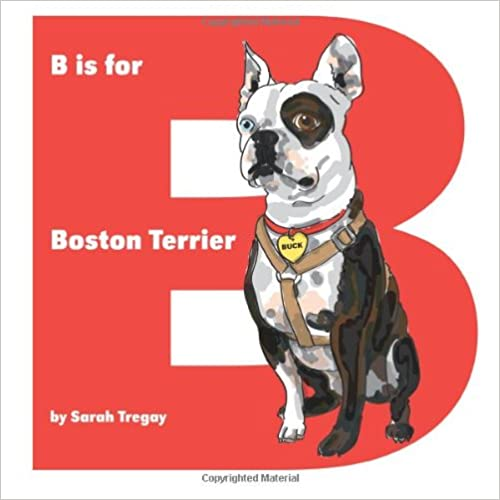 B Is For Boston Terrier B is for Boston Terrier Sarah