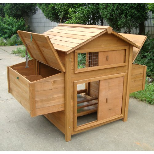 Backyard Hen House