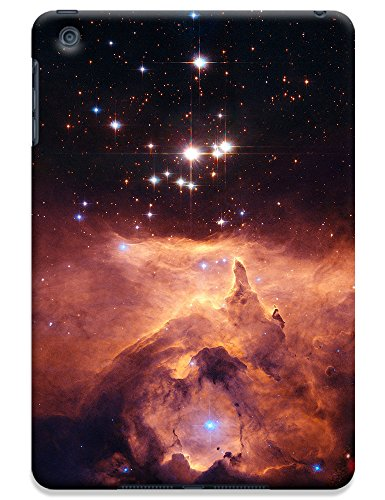 Sangu Roaring Flame Hard Back Shell Case / Cover for Ipad Mini image