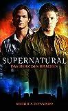Image de Supernatural: Das Herz des Drachens