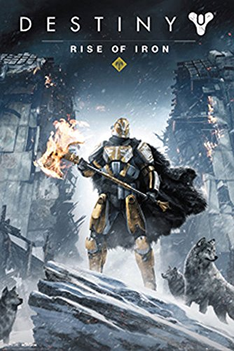 empireposter 745507 Destiny - Rise of Iron - videogioco game Stampa Poster - dimensioni 61 x 91,5 cm, carta, multicolore, 91,5 x 61 x 0,14 cm