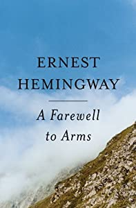 an overview of the typical love story in the novel a farewell to arms by ernest hemingway The sun also rises, ernest hemingway's brilliant 1926 reaction to a farewell to arms hemingway the sun also rises is a 1926 novel written by.