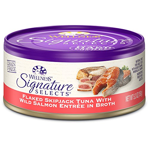 Wellness Signature Selects Natural Canned Grain Free Wet Cat Food, Flaked Tuna & Wild Salmon, 5.3-Ounce Can (Pack of 24) (Wellness Canned Cat Food Salmon compare prices)