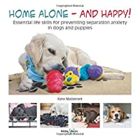 Home alone and happy!: Essential life skills for preventing separation anxiety in dogs and puppies
