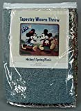 DISNEY MICKEY'S SPRING PICNIC THROW
