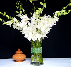 Fresh Flowers - White Dendrobium Orchids with Vase